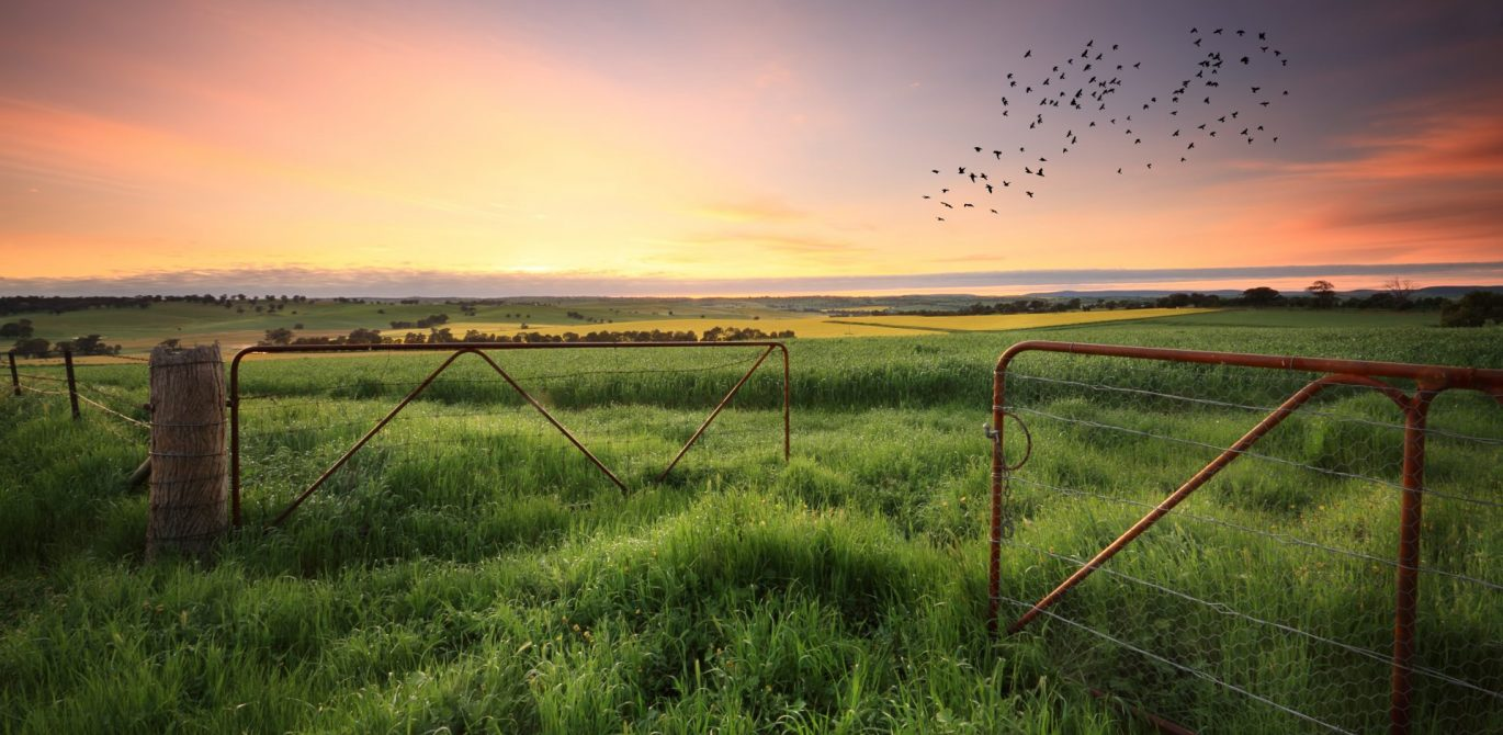 Rural land: how to do the groundwork